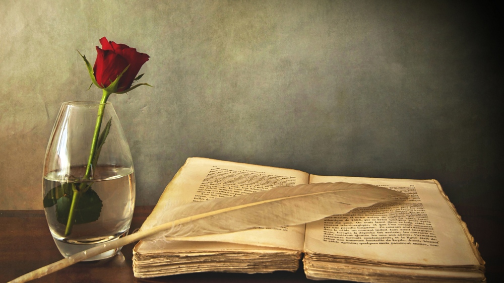 book_old_pen_table_vase_rose_red_76972_2048x1152